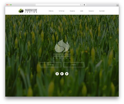 Divi WordPress theme - junior.net.pl