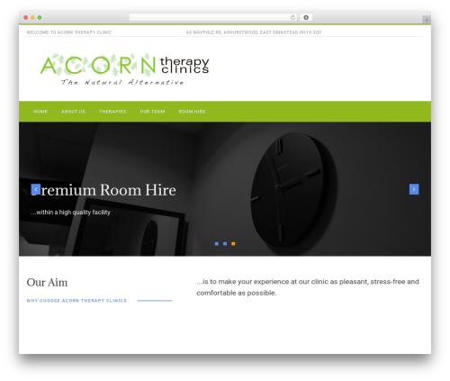 WordPress theme PhysioPlus - acorntherapyclinics.com