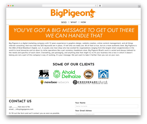 Spiffy Lite WordPress theme download - bigpigeons.com