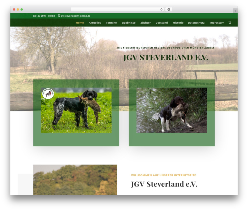 Theme WordPress Divi - jgv-steverland.de