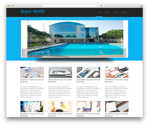 WordPress theme Simplicity Lite - royalhealthclub.com