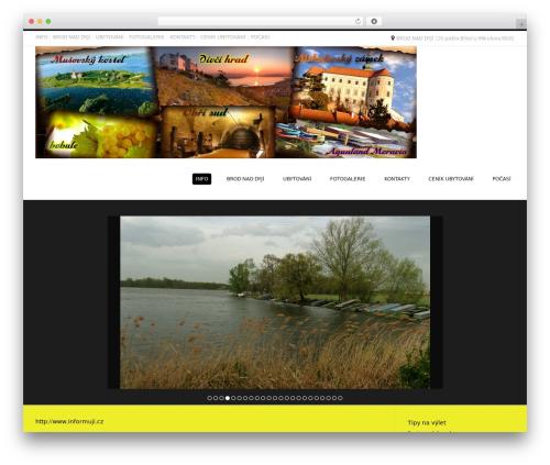 Best WordPress theme Conica - ubytovaniunas.net