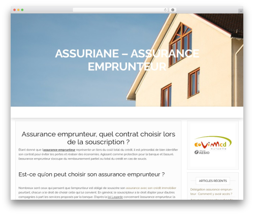 Head Blog WordPress blog template - assuriane.fr