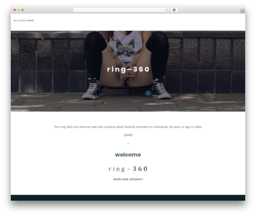 Multiple Business WordPress template for business - ring-360.com