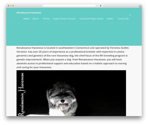 Salient WordPress template - renaissancehavanese.net