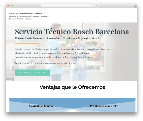 Neve WordPress website template - serviciotecnicos.com