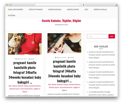 WordPress website template Blog Circle - hamilelersoruyor.com