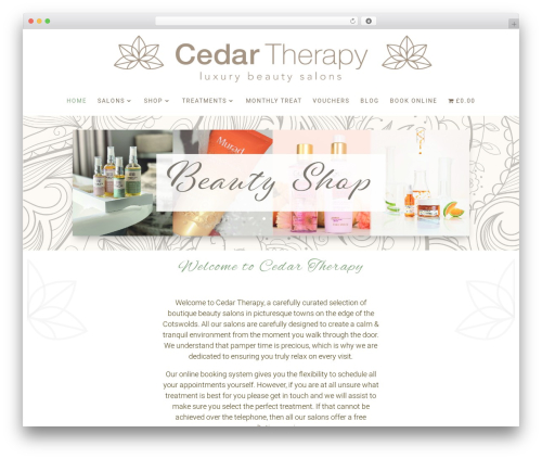 Divi WordPress theme - cedartherapy.com