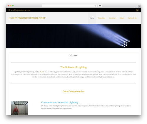 WordPress website template Di Responsive - ledesigncorp.com