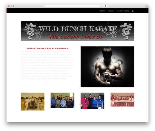 Divi top WordPress theme - wildbunchkarate.com