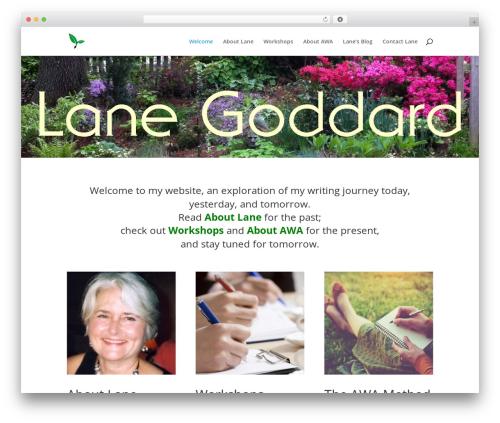 Divi WordPress shopping theme - lanegoddard.com
