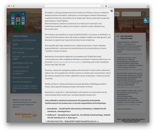 TownPress WordPress theme design - mgopsziebice.pl