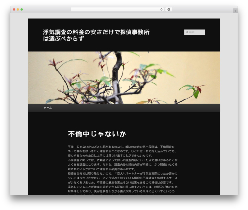 Twenty Eleven WordPress theme download - aquaanthropos.com