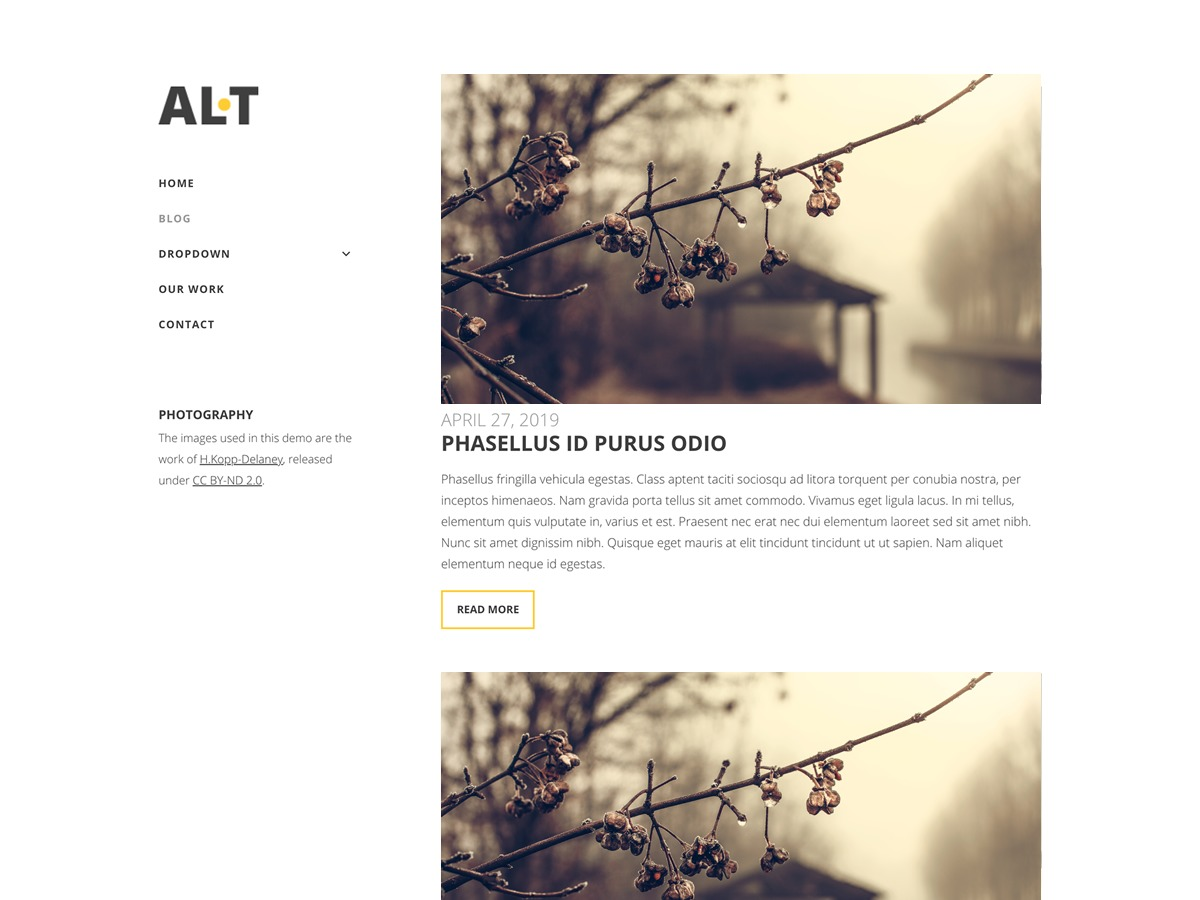 Alternate Lite WordPress blog template