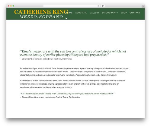 Divi best WordPress theme - catherineking.org
