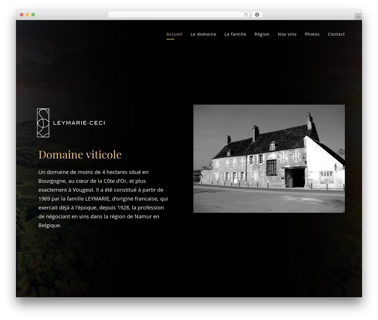 Movedo best WordPress template - leymarie-ceci.fr