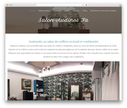 Beauty Studio WordPress theme - audinosfa.com