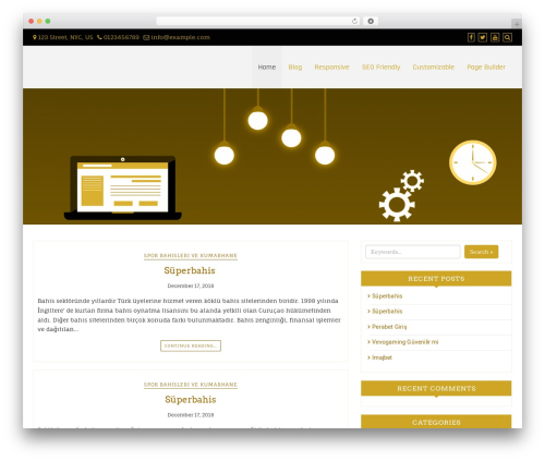 Di Responsive WordPress theme - rooftopinteractive.com
