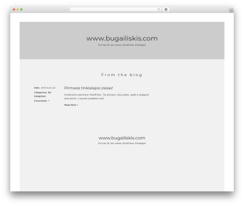 True North WordPress page template - bugailiskis.com
