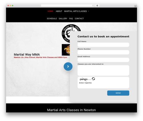 Martial Arts V8 top WordPress theme - martialwaymma.com