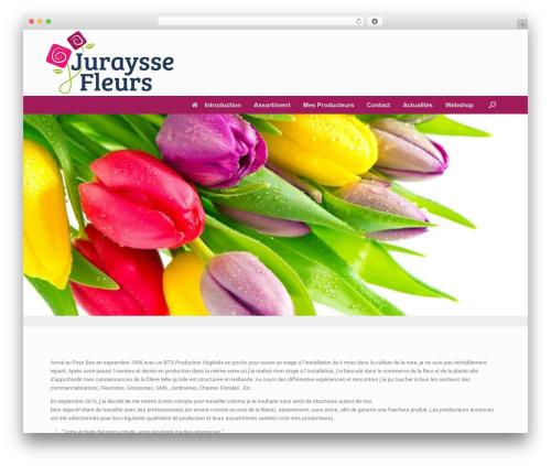 Vantage free website theme - jurayssefleurs.com