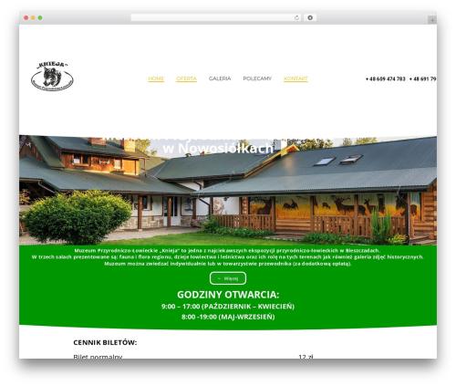 Energico WordPress website template - muzeumknieja.pl