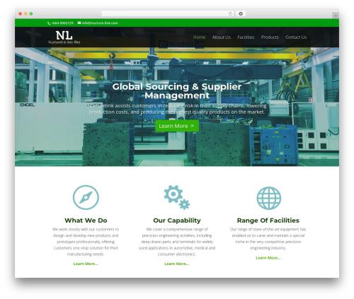 WP theme Divi | Shared By VestaThemes.com - nurture-link.com