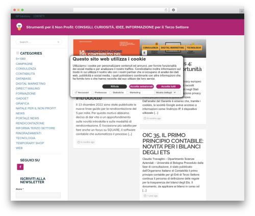 Bayside WordPress theme - strumentiperilnonprofit.it