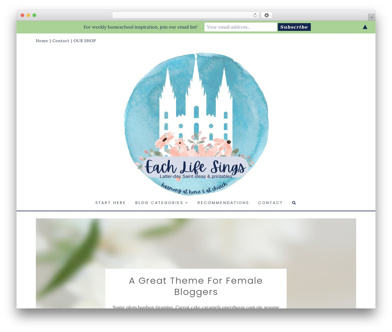 WordPress website template Angie Makes Child Theme - eachlifesings.com