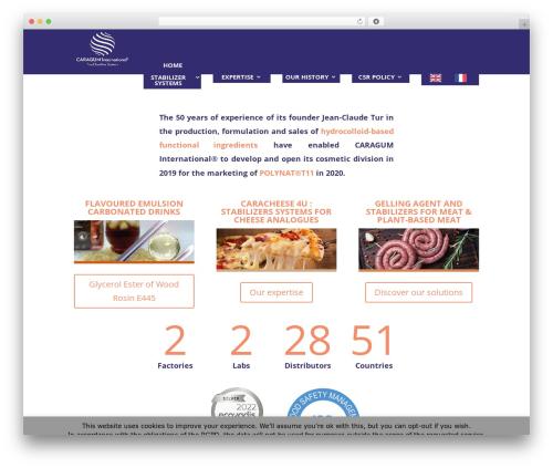 Divi theme WordPress - caragum.com