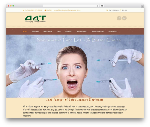 Best WordPress theme Dream Spa - antiagingtherapy.services