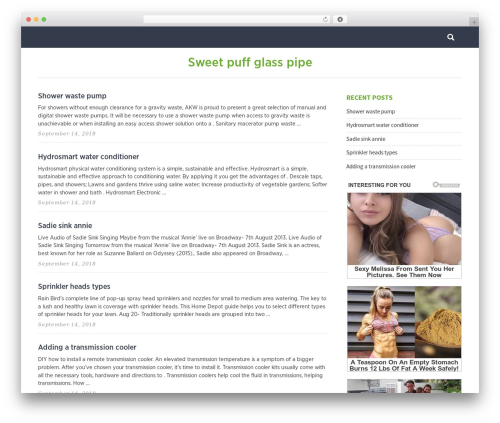 WordPress theme Pixeldom Lite - urpravo2.ru