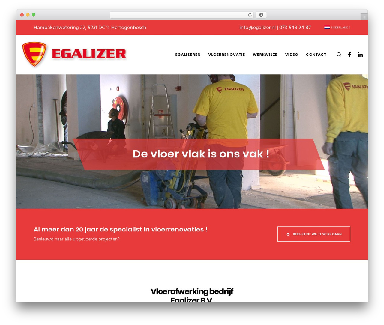 Movedo WordPress theme design - egalizer.nl