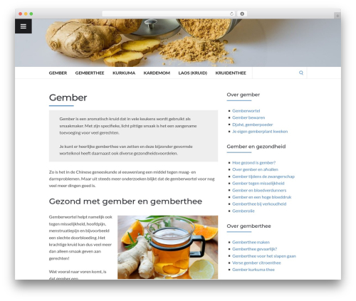 Best WordPress template Socrates v5 - gember.org