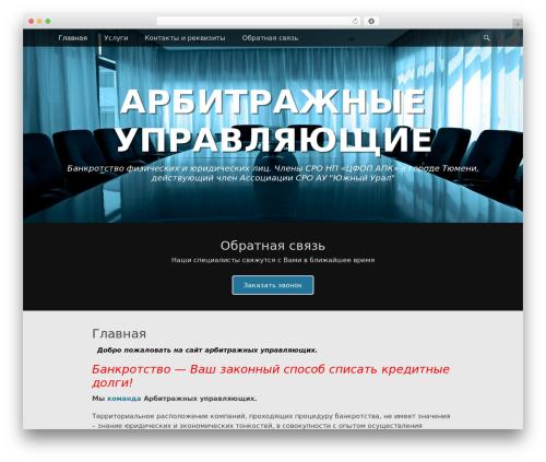 Catch Adaptive template WordPress free - au72.ru