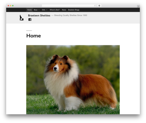 Cleanine top WordPress theme - braeleenshelties.com