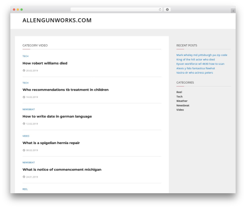 Telescope free WordPress theme - allengunworks.com