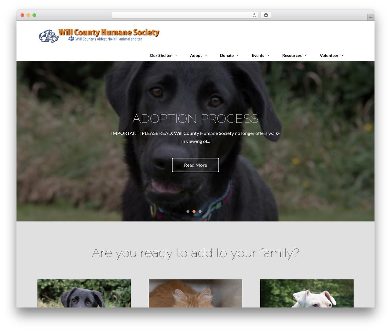 Template WordPress Pet Business - willcountyhumane.com