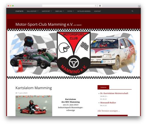 Stargazer WordPress template free - msc-mamming.de