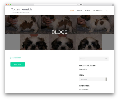 WordPress website template Pet Business - ycr.se