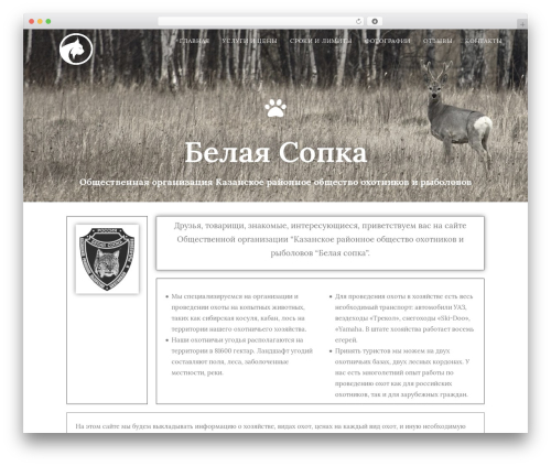 Free WordPress Companion Sitemap Generator plugin - belayasopka.ru